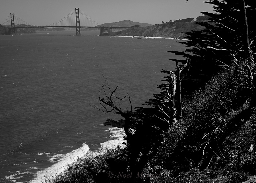San Francisco images in black and white, Golden Gate bridge