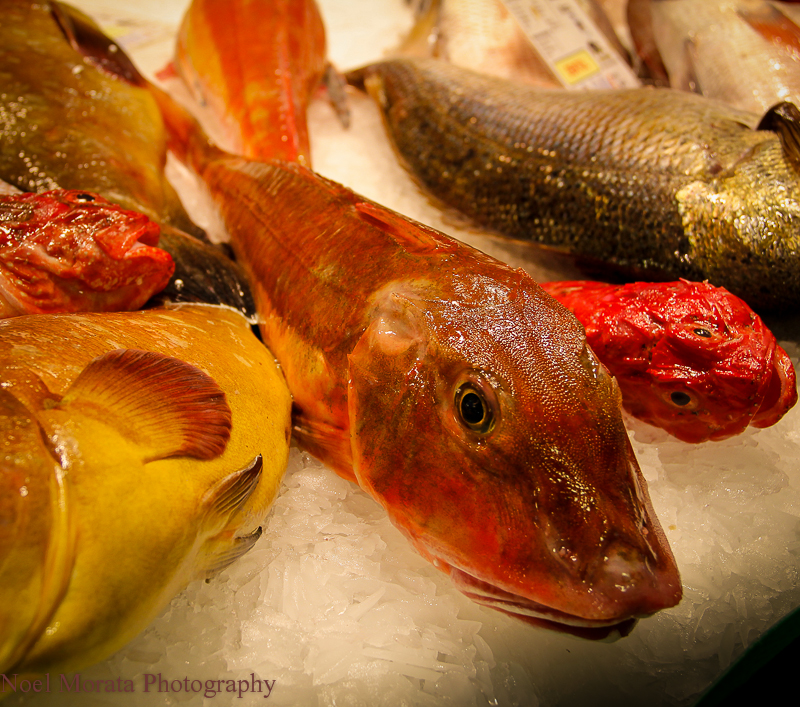 Fish display at La Boqueria