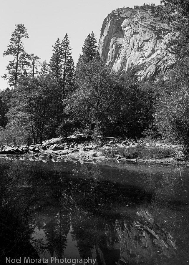 Yosemite images in black and white