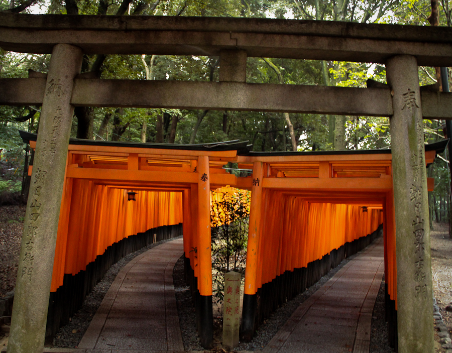 Uphill and downhill paths of the torii gates