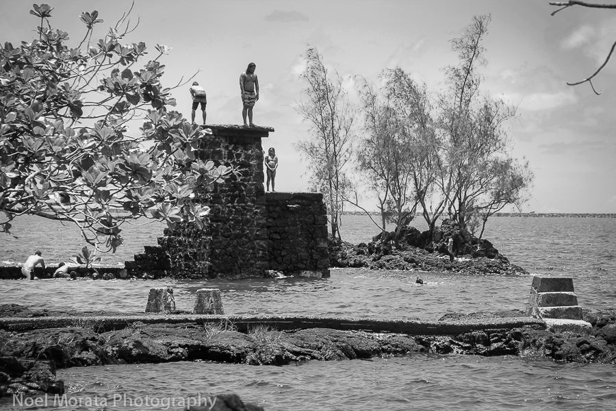 Coconut island in black and white