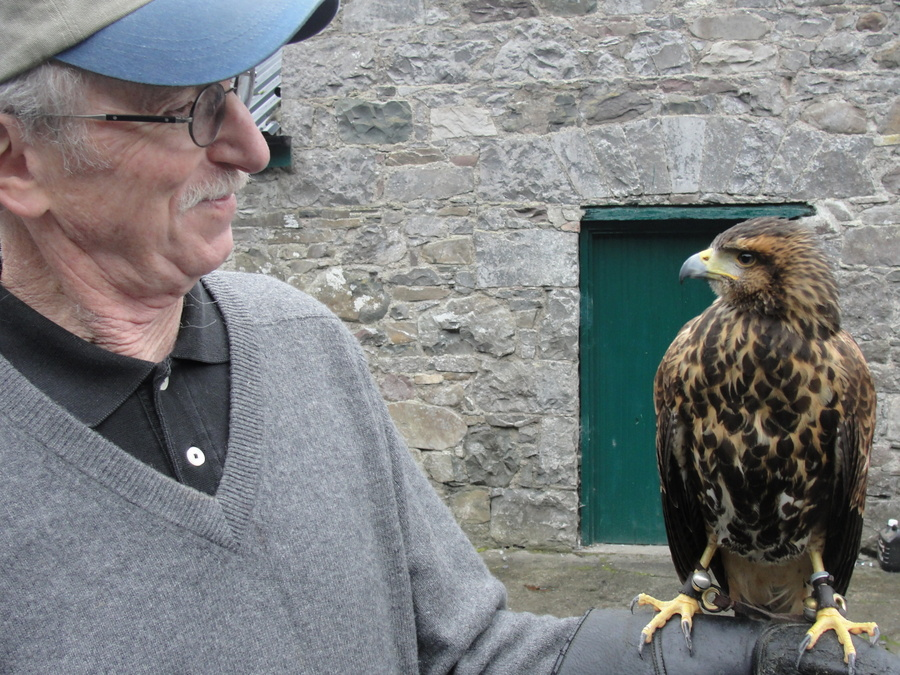 Cong Ireland-Ashford Castle-School of Falconry-