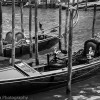 Venice 10 random thoughts, advice and quirky observations