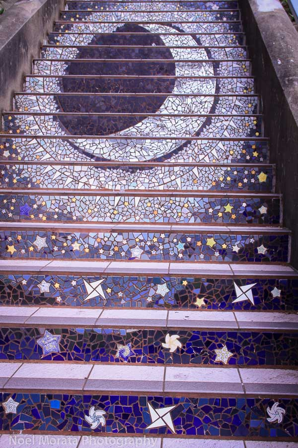 Planets and constellations,Evening to sunrise, California pinks and purples, California blooms, 16th Avenue stairs in San Francisco