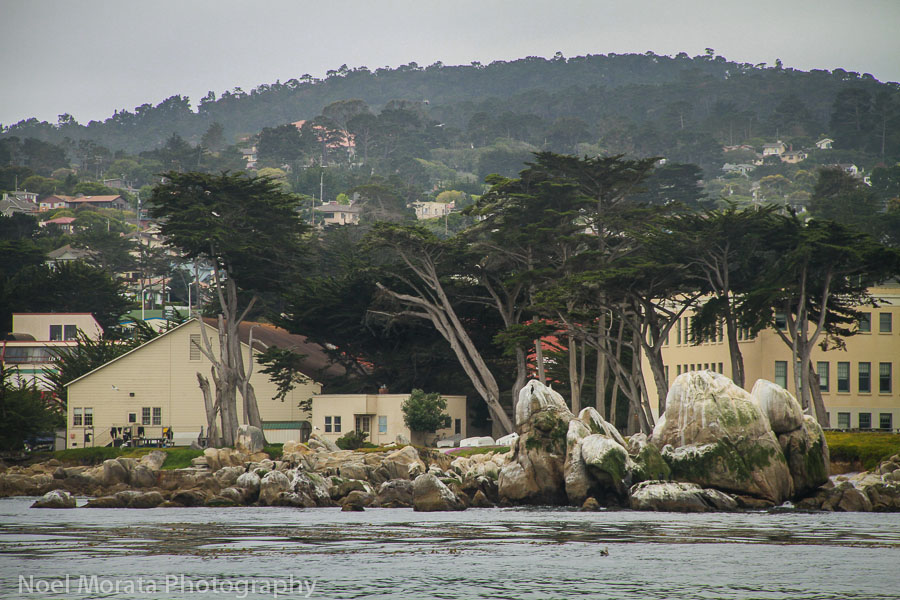 Coastal views of Monterey Bay