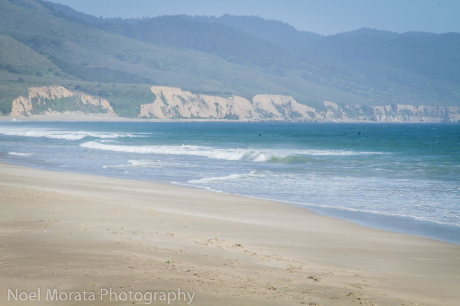 Coastal bluffs at Point Reyes National Seashore