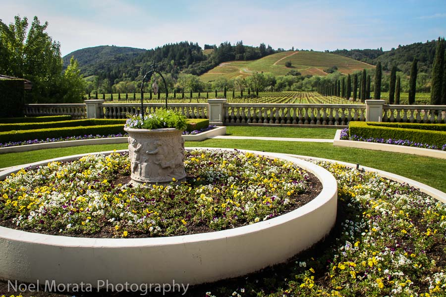 Entry garden and vineyards at Ferrari Carano winery