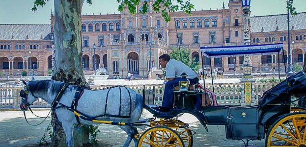Horse carriages at Plaza de Espana waiting for riders