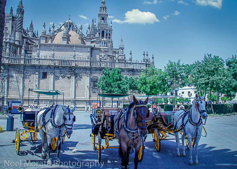 Discovering Seville in all the small details