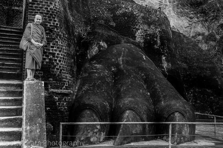 At the foot of the Lion Rock, Sigiriya