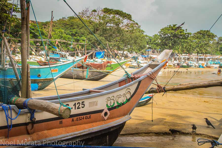 The fishing boats in Galle, Sri Lanka