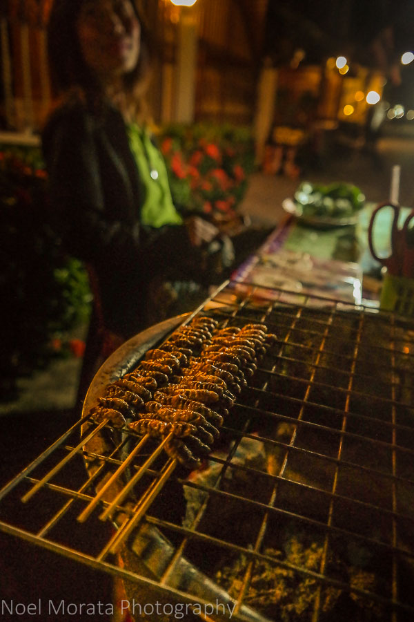 Grilled larvae from a street vendor in Chiang Khan