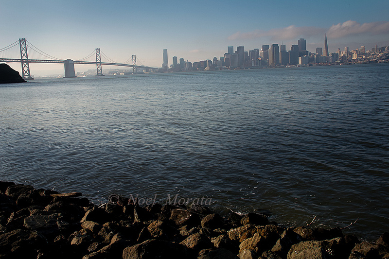Treasure island landscape scene, San Francisco, California