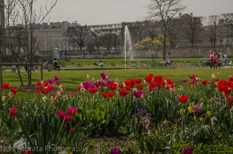 A wonderful spring day at the Tuileries garden