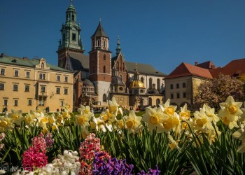 Krakow highlights in one day - Krakow cathedral