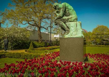 Side garden and the Thinker, at the Glyptotek museum, Copenhagen
