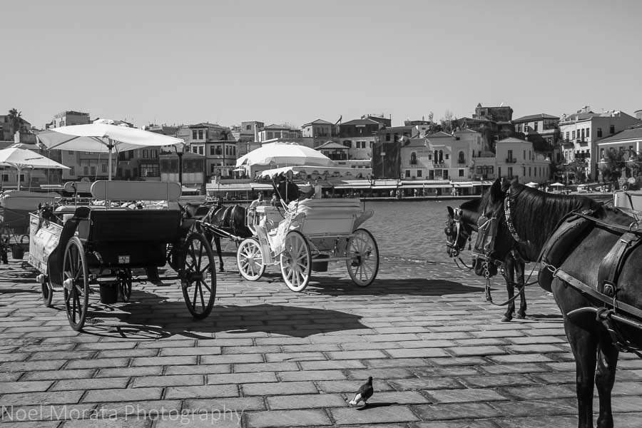 Carriage rides at Chania harbor - Exploring Chania, Crete