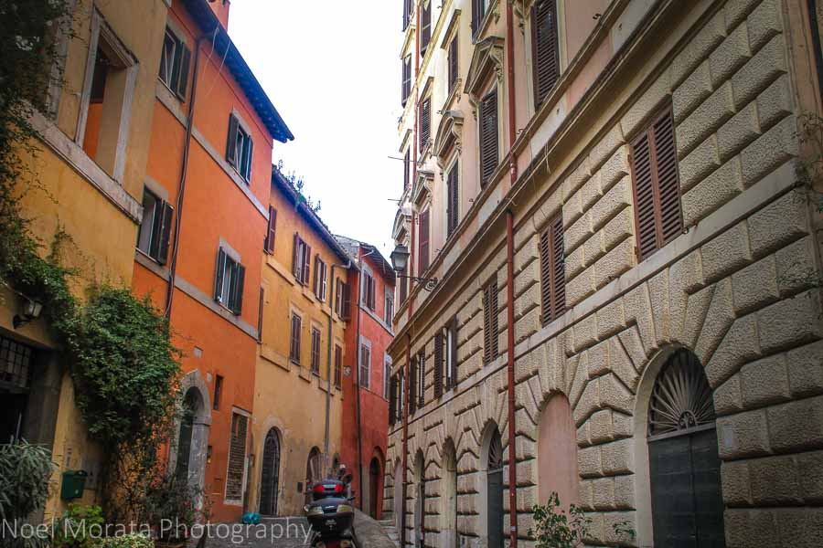 The main promenade in Trastevere; tasting specialty and local foods