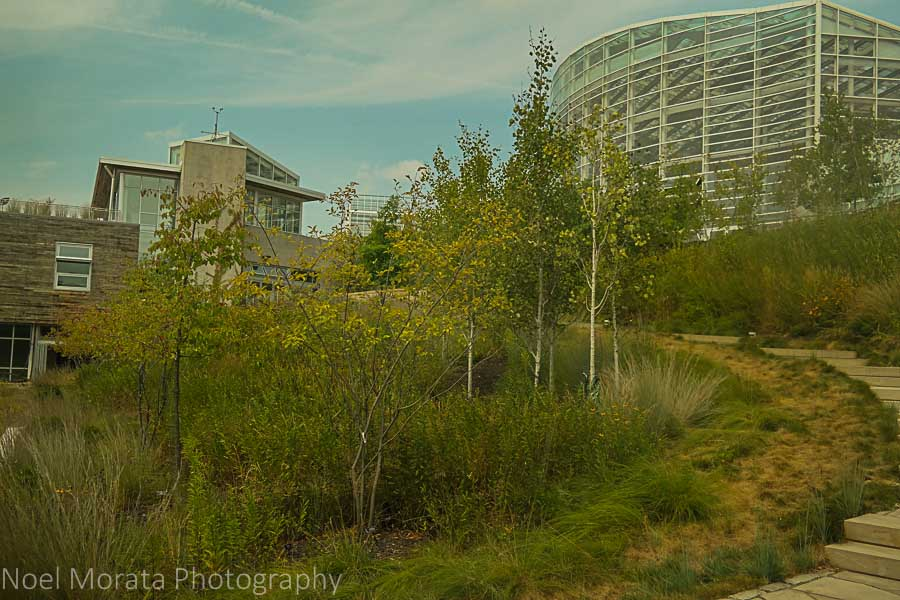 Green technology and beautiful architecture at Phipps