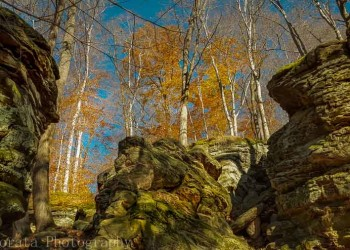 Entering Whipps Ledges at Hinckley Reservation in Ohio