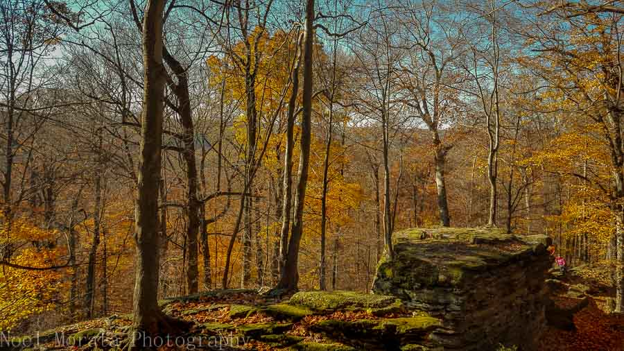 Looking out from Whipps Ledges in Hinckley Reservation, Ohio
