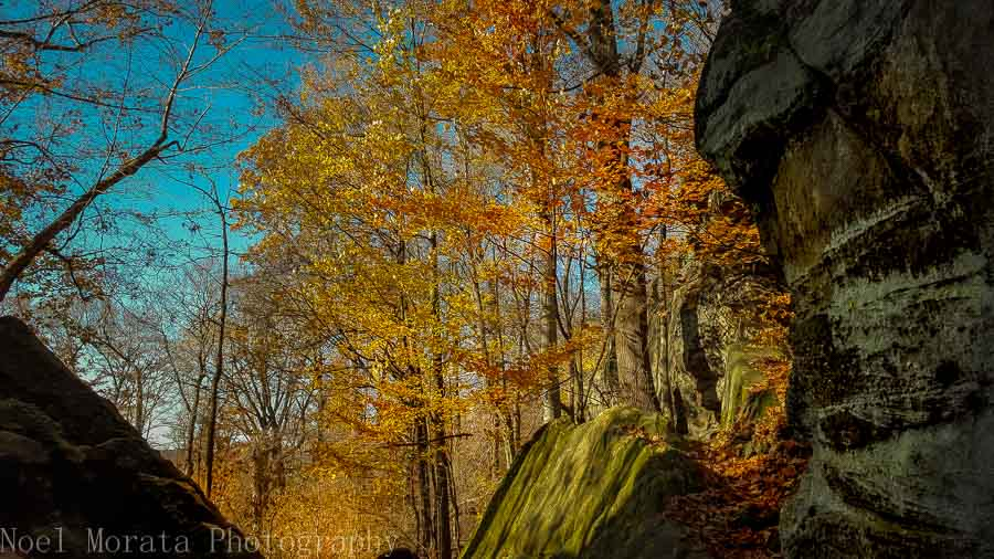 Gorgeous fall colors at Hinckley Reservation in Ohio