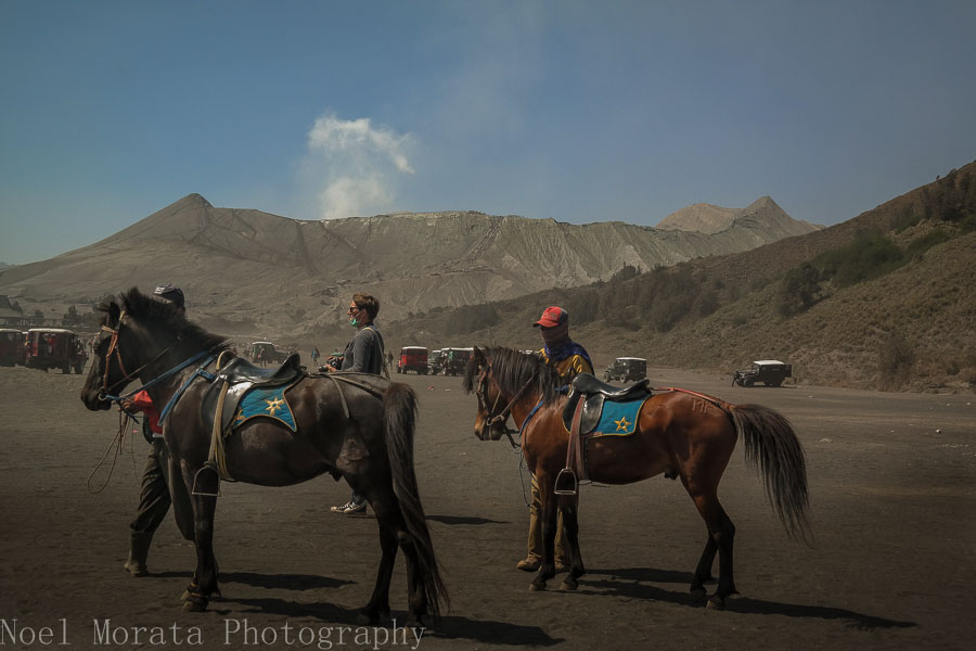 Waiting for more passengers for Bromo crater