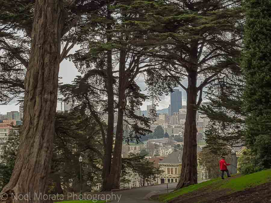 Fun and unusual activities to do in San Francisco