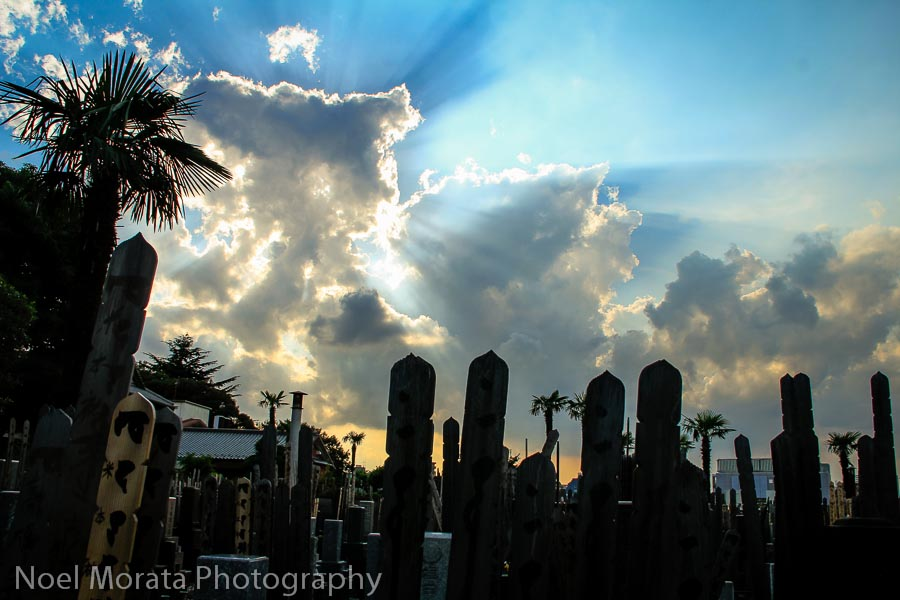 Yanaka Cemetery - Best places to photograph Tokyo Japan