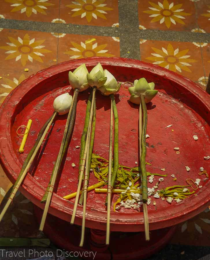 Lotus blossom offerings at the golden chedi of Doi Suthep