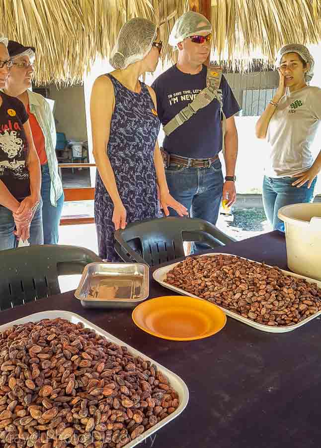 Cacao sorting at Chocal in the Dominican Republic