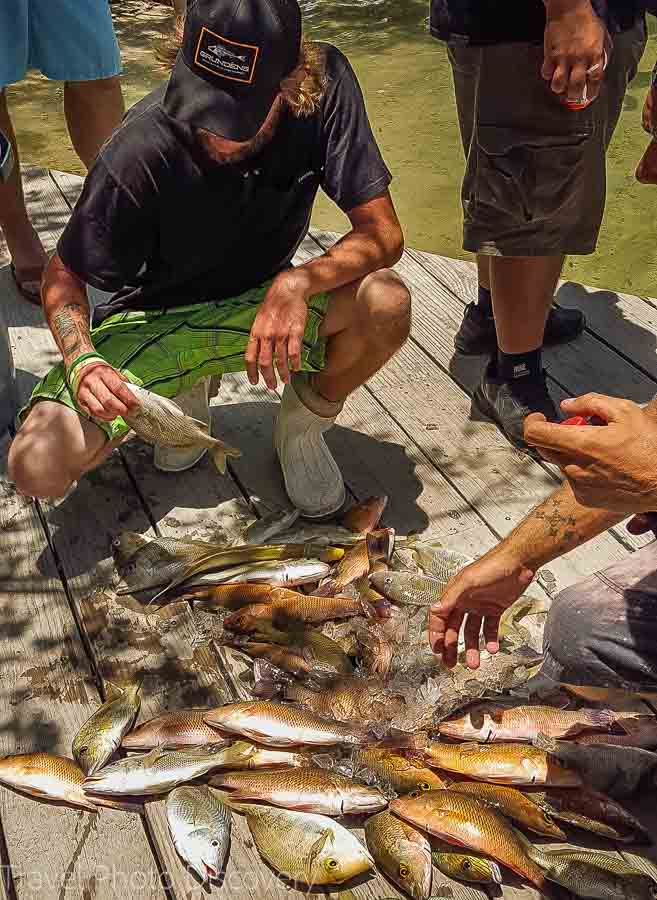 Separating and fileting fish at Capt Michael's fishing charter
