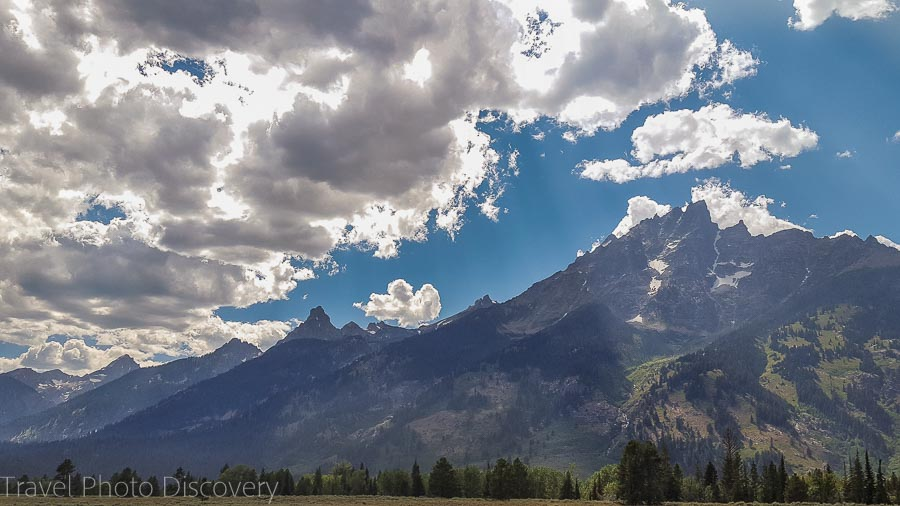 Wildlife tour at Grand Teton National Park