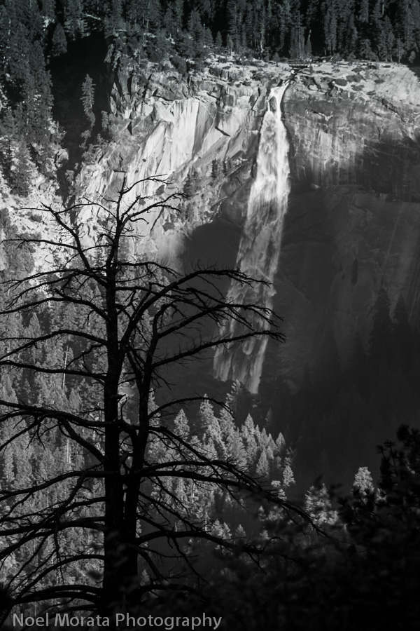 Nevada Falls Celebrating the US National Parks Centennial