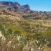 Driving the Apache Trail in Arizona