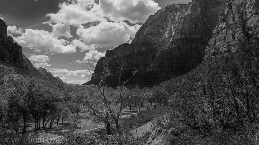 Kayenta trail Zion National Park Utah