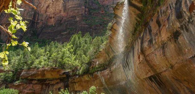 Emerald pools at Zion National Park Visiting Zion National Park