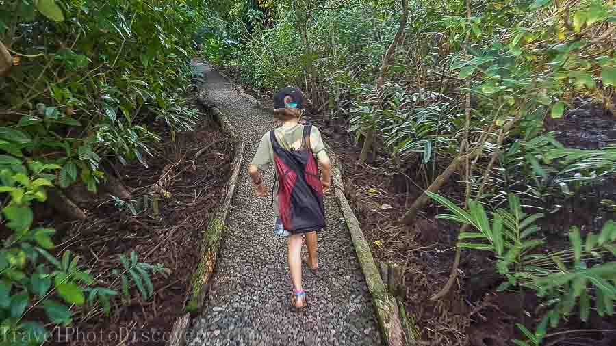 Walking to the main lodge at La Loma in Bastimentos Panama