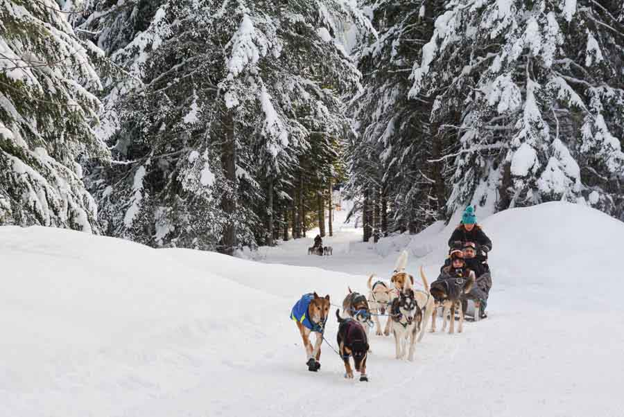 Top adventure and eco experiences dogsledding in Canada