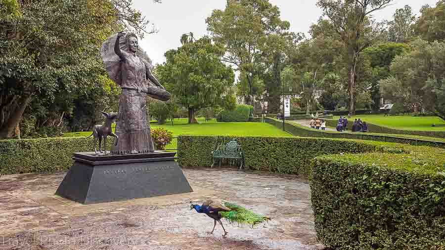 Touring Mexico City Tours by Locals Sports Museum of Dolores Olmedo