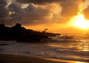 Waimea Bay Things to do in Oahu