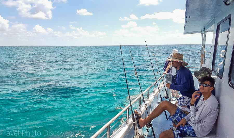 Fishing tours from Robbies at Islamorada Key