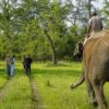 Exploring Chitwan National Park in Nepal