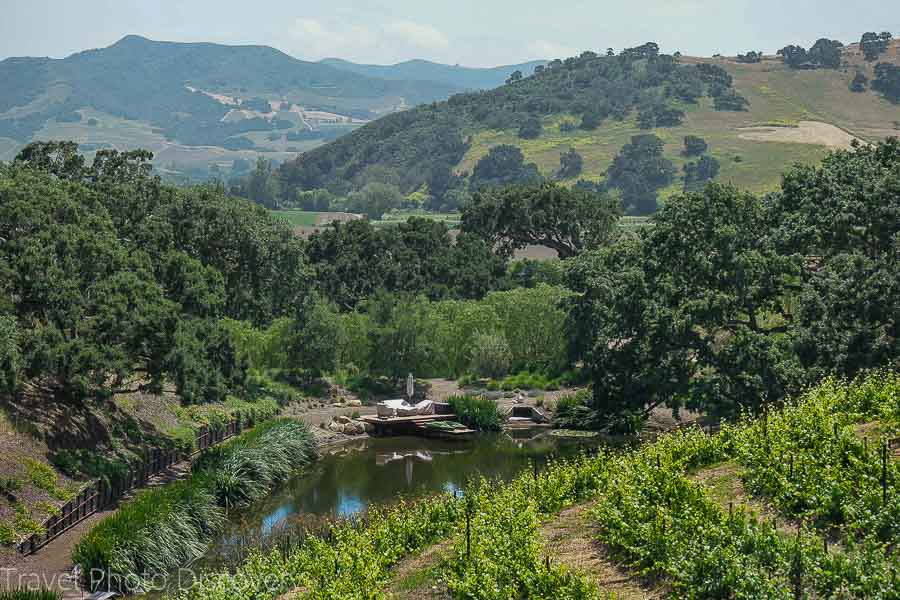 Hotels Near Santa Barbara Wineries