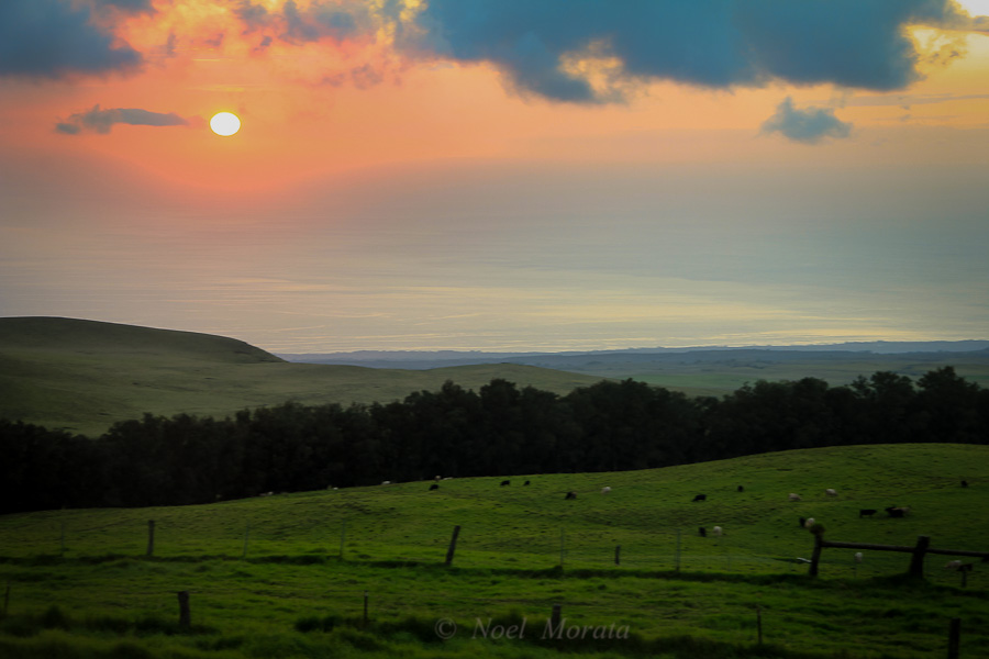 Kohala Mountains in Hawaii, Travel Photo Mondays #6