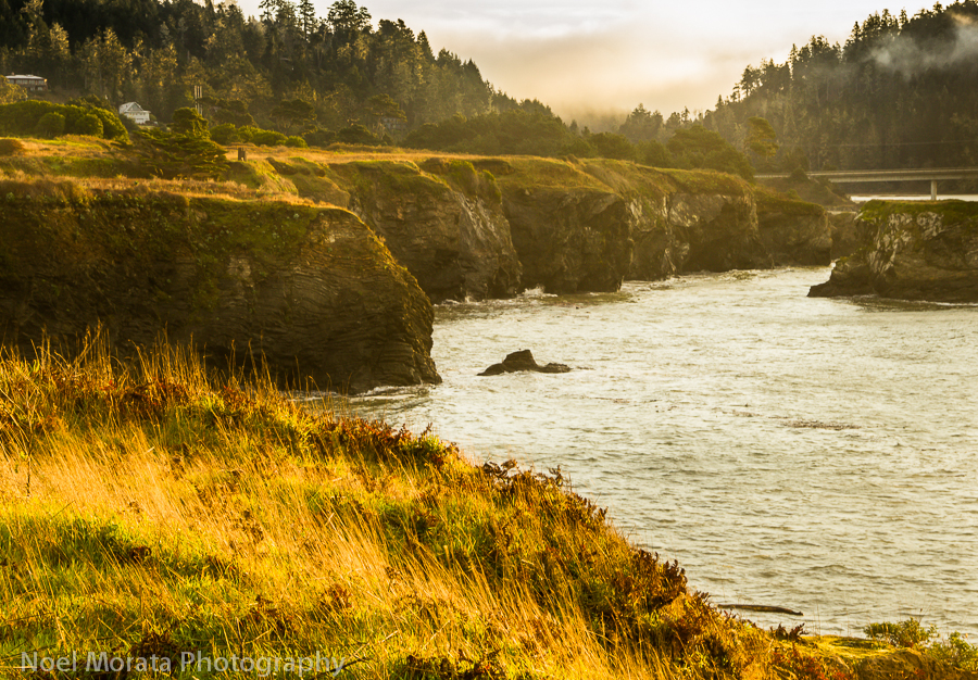 Coastal Mendocino sunrise hike