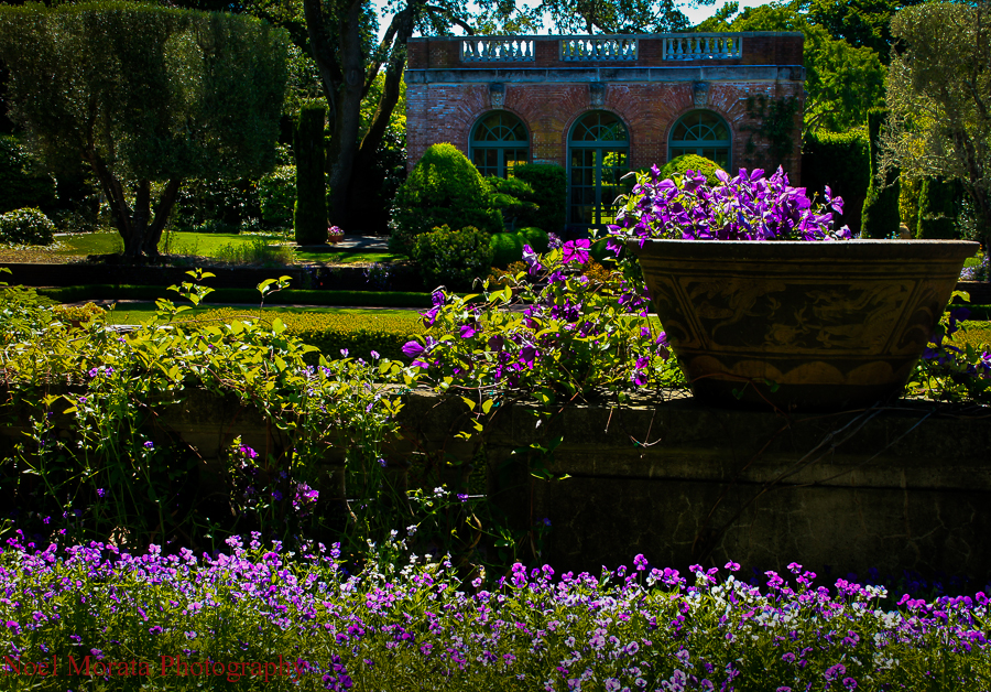 Filoli Gardens in Summer time