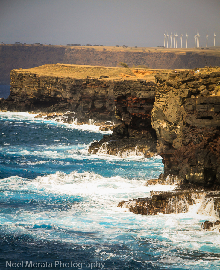 7 eco friendly things you don't know about Hawaii Island