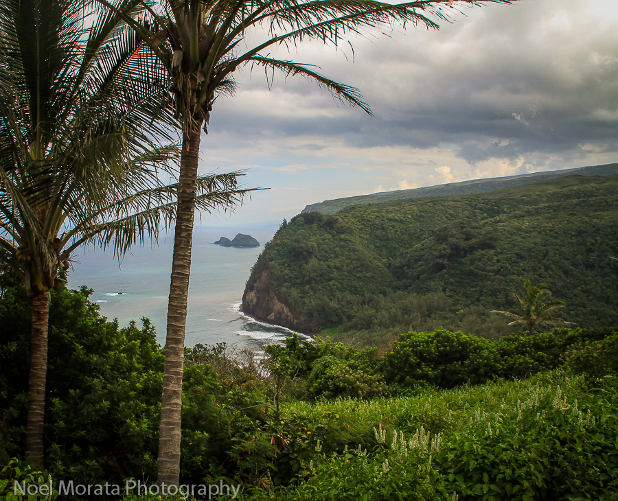 A visit to Polulu Valley in Hawaii, Travel Photo Mondays #31