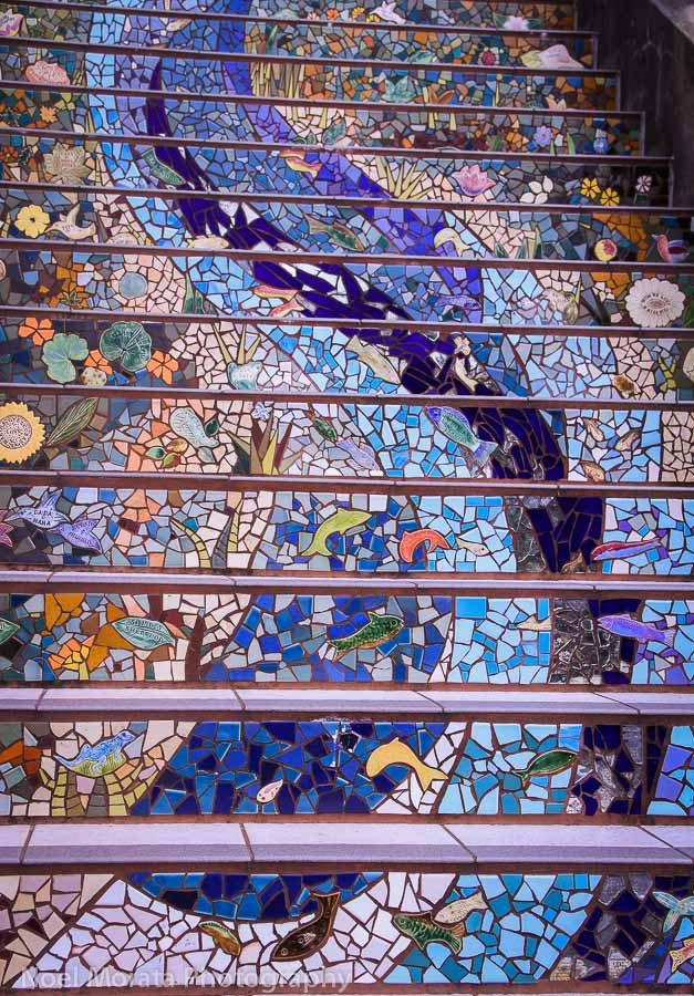 Friday Photo – 16th Avenue stairs in San Francisco
